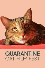 Quarantine Cat Film Festival (2020)
