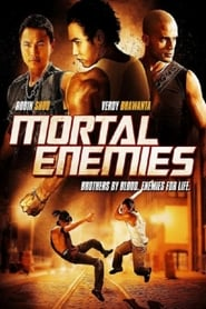 Mortal Enemies (2011)