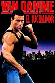 Leon peleador sin Ley