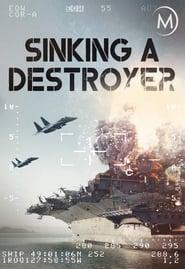 Sinking a Destroyer (2007)