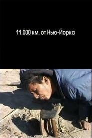 11.000 km from New York (2006) Zalukaj Online Cały Film Lektor PL CDA