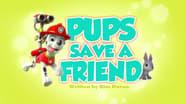 Pups Save a Friend