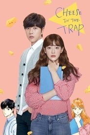 Poster Cheese in the Trap