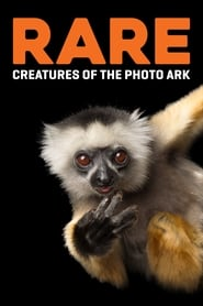 Rare: Creatures of the Photo Ark 2017