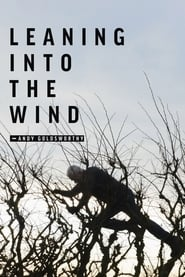 Leaning Into the Wind: Andy Goldsworthy (2018)