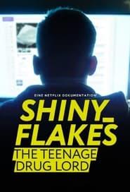 Shiny_Flakes : Le petit baron du darknet en streaming