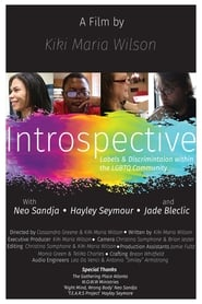 Introspective – Labels And Discrimination Within The LGBTQ Community