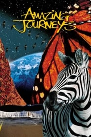 Amazing Journeys (1999) Zalukaj Online Lektor PL