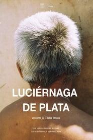 Luciérnaga de Plata [2020]