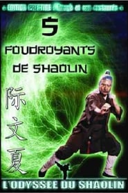 Les 5 Foudroyants de Shaolin en streaming