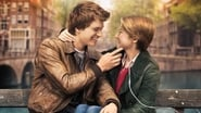 EUROPESE OMROEP | The Fault In Our Stars