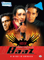 Baaz: A Bird in Danger 2003 Hindi Movie AMZN WebRip 400mb 480p 1.3GB 720p 4GB 11GB 1080p