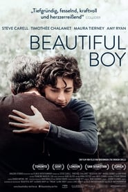 Beautiful Boy [2018]