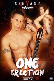 One Erection (2014)
