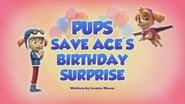 Pups Save Ace's Birthday