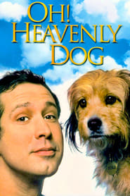 Poster Oh Heavenly Dog 1980