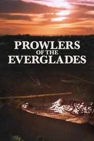 Prowlers of the Everglades (1953)
