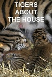Tigers About the House