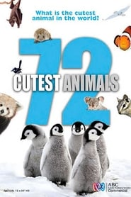 72 Cutest Animals Sezonul 1