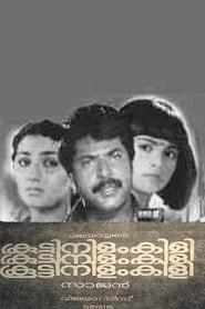 കൂട്ടിനിളംകിളി 1984