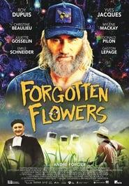 مشاهدة فيلم Forgotten Flowers مترجم