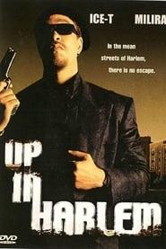 Up in Harlem (2004)