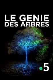 Le génie des arbres (2020)