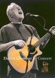 David Gilmour: In Concert (2002)