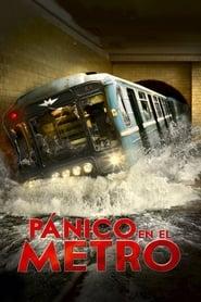 Pánico en el metro 2013