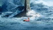 The Meg Images