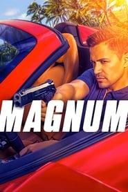 Poster Magnum 2021
