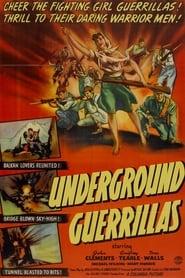 Undercover (1943)