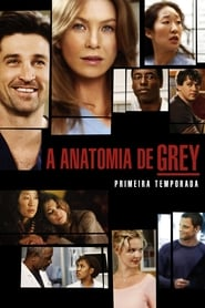Grey's Anatomy - Season 1 Episode 1 : A Hard Day's Night