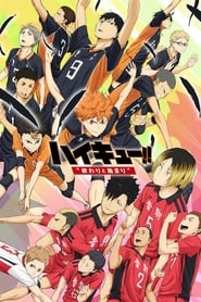 Haikyuu!! The Movie: Beginnings and Endings (2015)