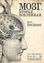 Brain. Second Universe