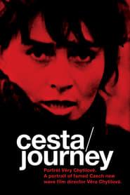 Cesta - portrét Věry Chytilové 2004