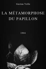 فيلم Metamorphosis of a Butterfly 1904 مترجم أون لاين بجودة عالية