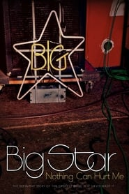 Big Star: Nothing Can Hurt Me 2013