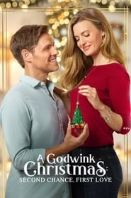 A Godwink Christmas: Second Chance, First Love (2020) poster