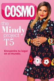The Mindy Project: Temporada 5