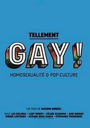 Tellement gay ! Homosexualité & pop culture 2015
