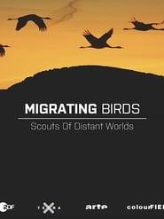 Zugvögel - Kundschafter in fernen Welten 2016