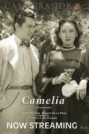 Camelia 1949