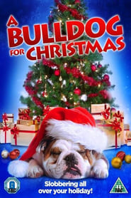 A Bulldog for Christmas (2013)