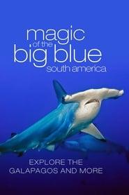The Magic of the Big Blue 2013