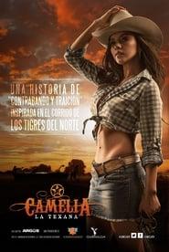 Camelia la Texana 2014