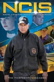 Watch NCIS season 13 episode 8 S13E08 free