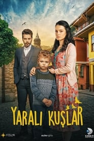 Pasari ranite – Yarali Kuslar