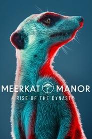 Meerkat Manor: Rise of the Dynasty - Season 1