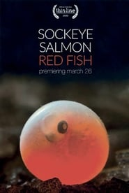 Sockeye Salmon. Red Fish (2020)